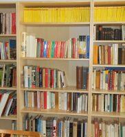2013-biblioteca-dante