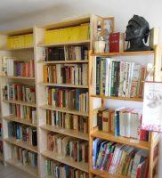 Bibliothek der Dante Linz
